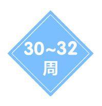 30-32周胎儿四维超声检查