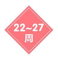 22-27周四维排畸筛查